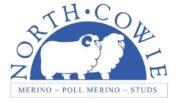 North Cowie Merino & Poll Merino Studs